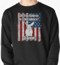 Q Anon White Rabbit Do You Believe in Coincidences? Pullover
