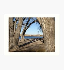 Lake Through the Trees in Early Winter Art Print