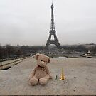 Barnaby in Paris by Carol Dumousseau