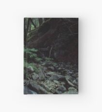 Serene Forest Creek Hardcover Journal