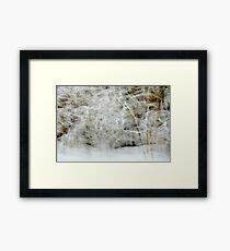 Snowstorm in Valserine forest Framed Print