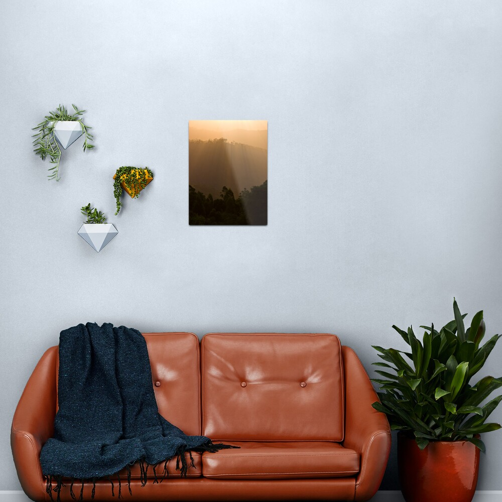 Sunset over the forest Metal Print