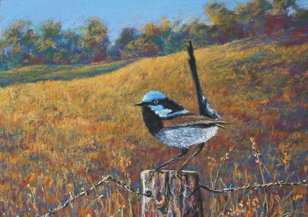 'Superb Blue Wren' by Helen Miles