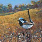 'Superb Blue Wren' by Helen Miles