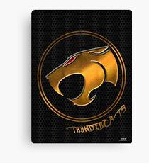 comic thundercats Canvas Print