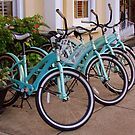 Blue Bikes by Rodney Lee Williams