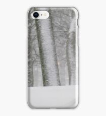 Snowy day in New York City  iPhone Case/Skin