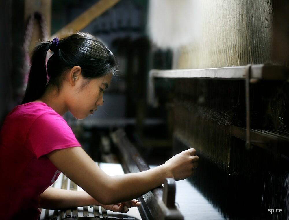 silk weaver by spice