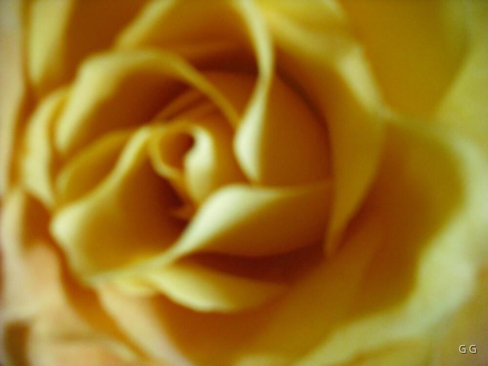Yellow Swirl by G G