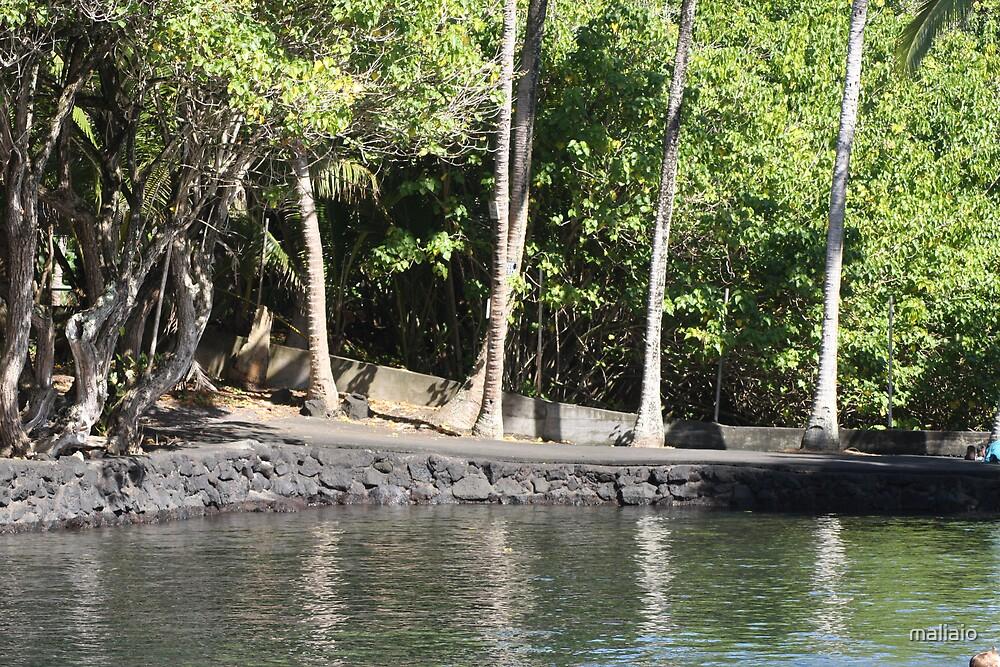 Ahala Nui Beach Park by maliaio