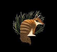 Numbat by casandrang