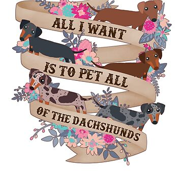 Pet All Of The Dachshunds by Psitta