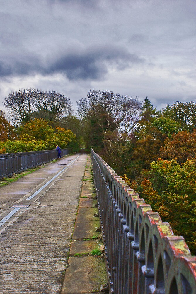 Hownsgill Viaduct by Vandit