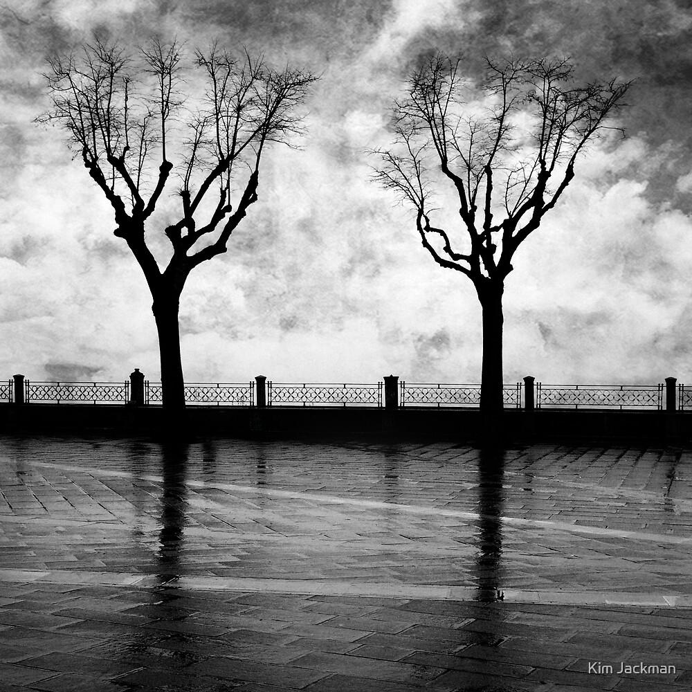 Night Trees by Kim Jackman