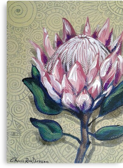King Protea by Cherie Roe Dirksen
