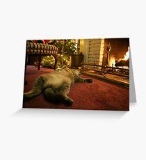 Comfort & Joy Greeting Card