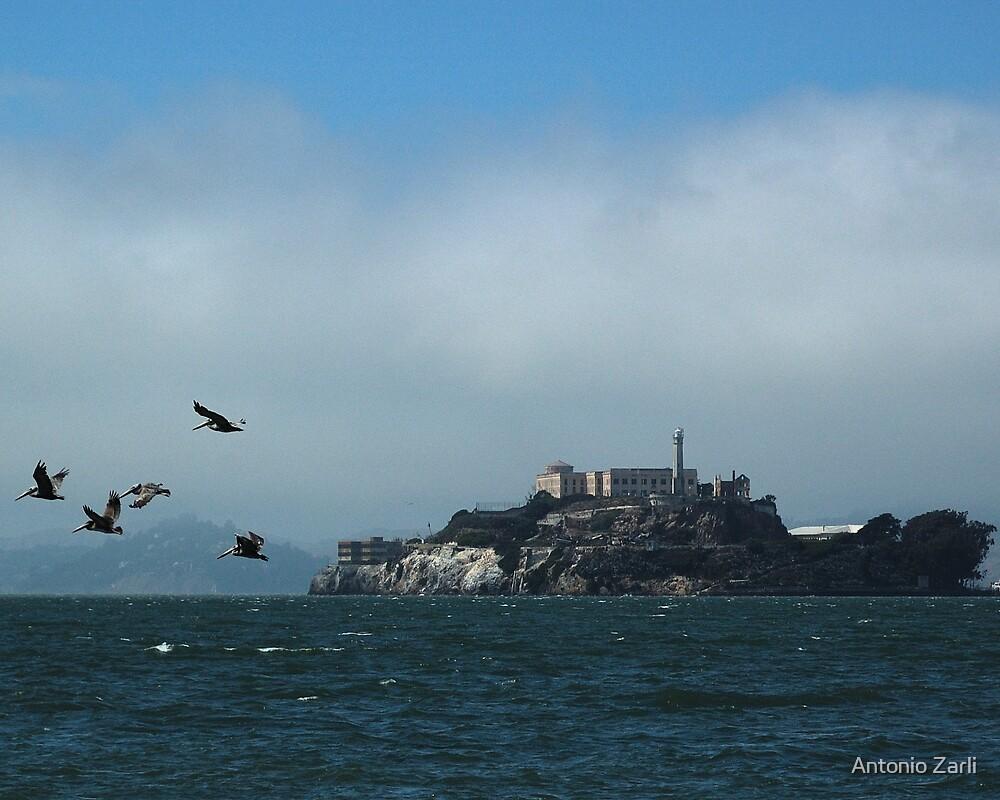 Alcatraz by Antonio Zarli