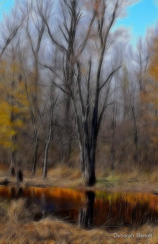 Autumn Reflection by Deborah  Benoit