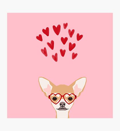 Chihuahua heart glasses dog breed valentines day cute gifts for chiwawa lovers Photographic Print