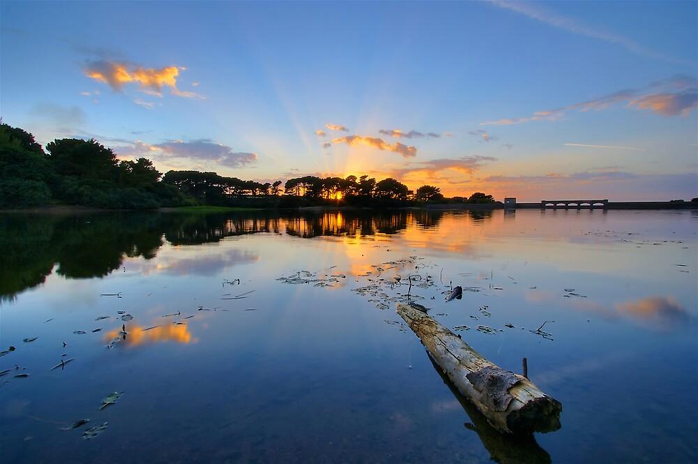 Reservoir Logs by PhotoToasty