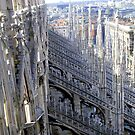Milano - The Duomo, side's detail by sstarlightss