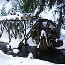 Waterwheel by NancyC