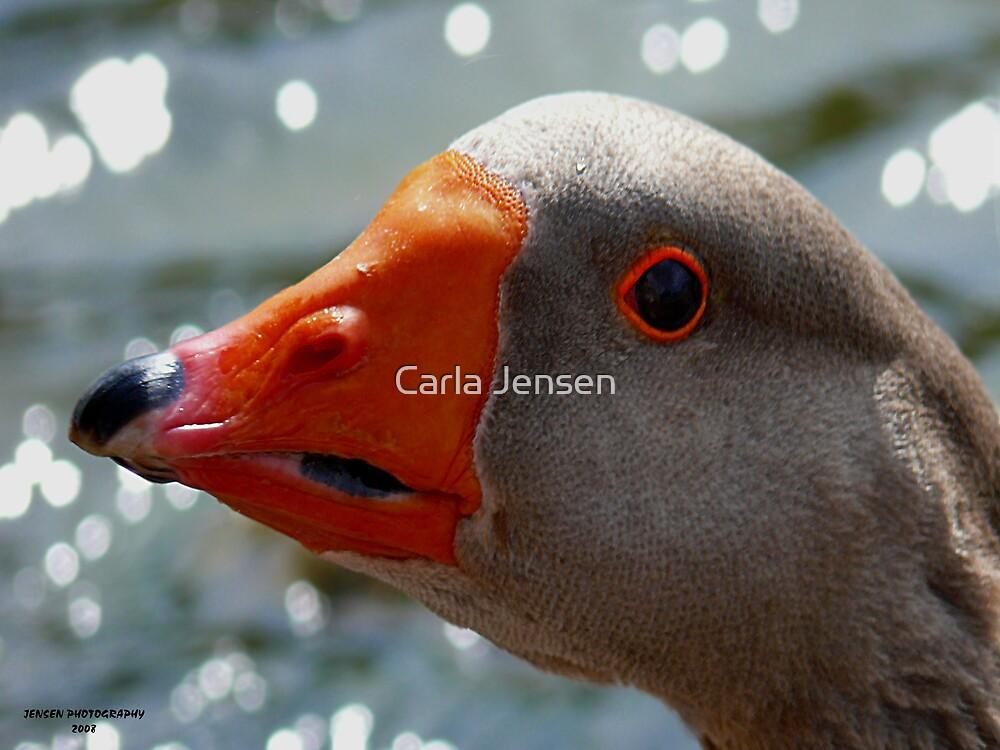 Mother Goose by Carla Jensen