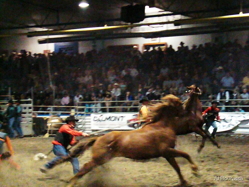 Wild Horse Race  by Al Bourassa