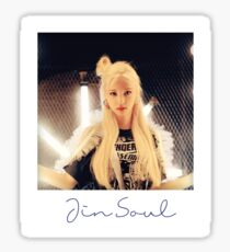 Jin Soul Polaroid Sticker