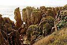 Pancake rocks by Yukondick