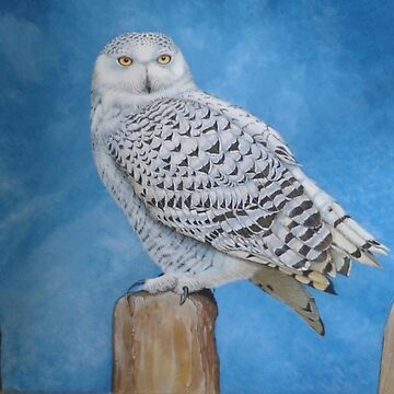Snowy Owl by brooke1312