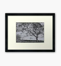 A Winter Scene Framed Print