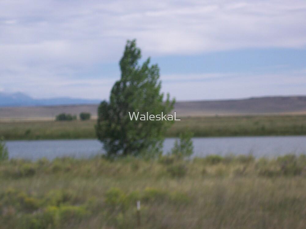 Imaginary Tree by WaleskaL