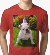 bulldog with party hat Tri-blend T-Shirt