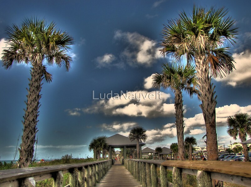 Quot Lets Go To The Beach Englewood Fl Quot By Ludanayvelt