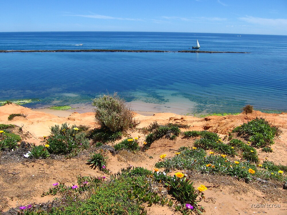 Port Noarlunga flowers and sail boat by robertcroa