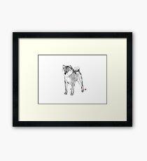 Handsome Shiba Inu card,Animal illustration Sumi-e Painting B&W Asian Japanese Zen theme Dog Framed Print