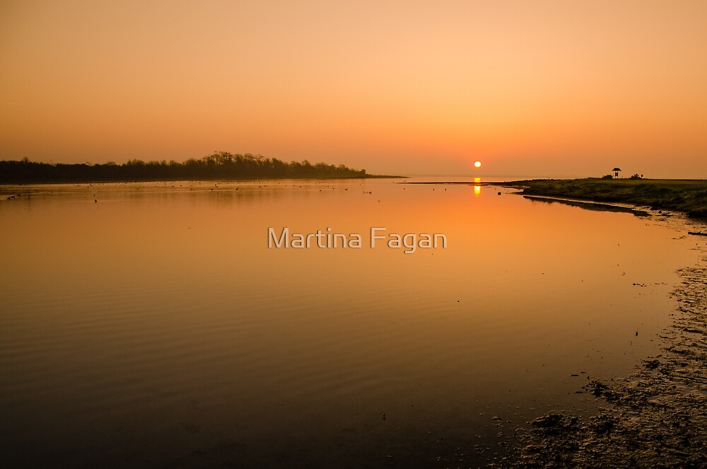 Estuary  by Martina Fagan