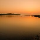 Estuary  by Martina Fagan