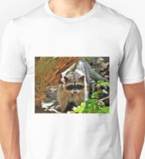 Raccoon 2 - Washington State Unisex T-Shirt