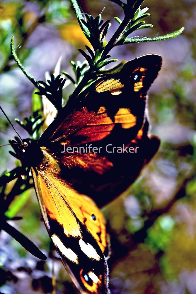 Happy Wanderer Butterfly by Jennifer Craker