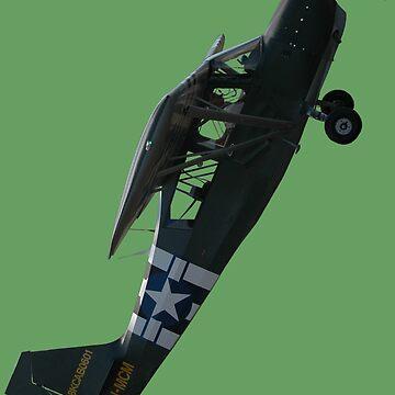 Plane & Simple - Bellanca 8KCAB VH-MCM by muz2142