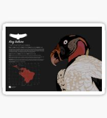 King Vulture Infographic Sticker