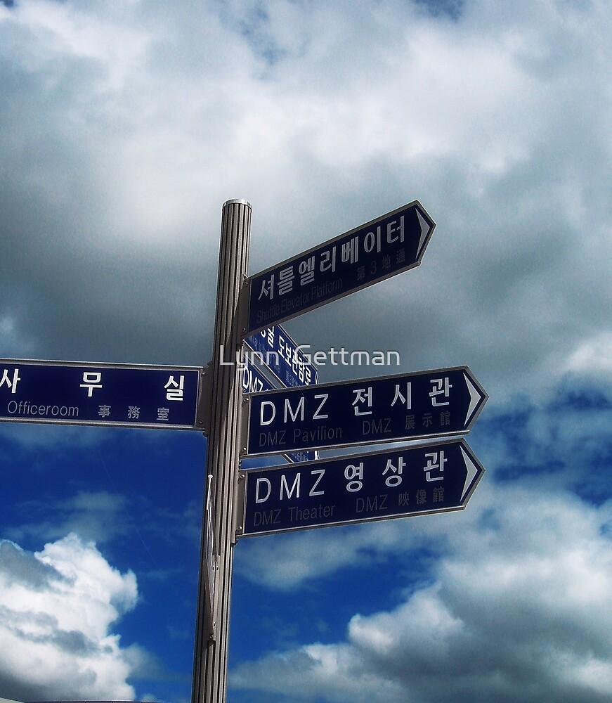 DMZ by Lynn  Gettman