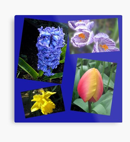 The Sweetness of Spring Floral Collage Metallbild