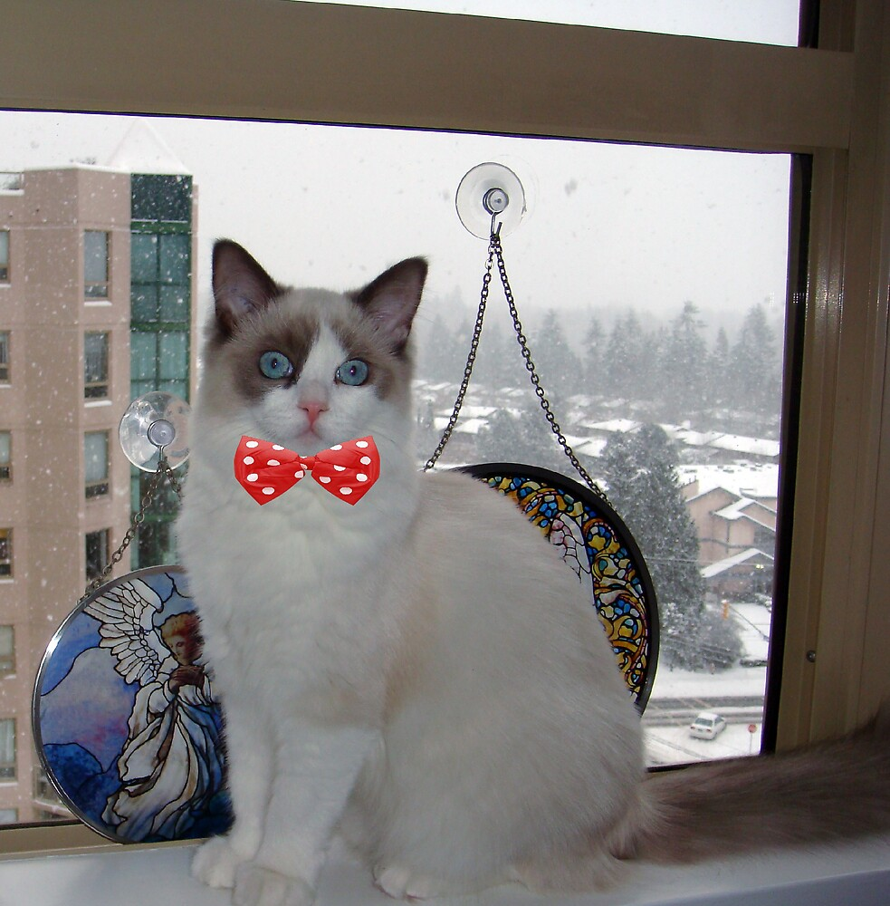 """Lily-Rose's Window on her """"1st White Christmas""""! by Carol Clifford"""