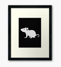 White mouse rat Framed Print