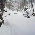 March Snow Falling on Seneca Falls by Gene Walls