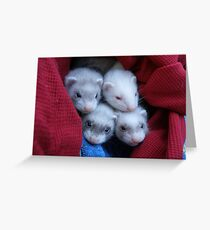 New Furry Ferrity Additions!! Greeting Card
