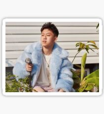 RICH CHIGGA- WATER THESE HOES  Sticker
